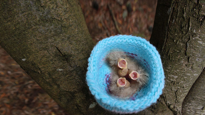 How to knit a Bird Nest with Studio Knit - Free Knitting Pattern and Video Tutorial