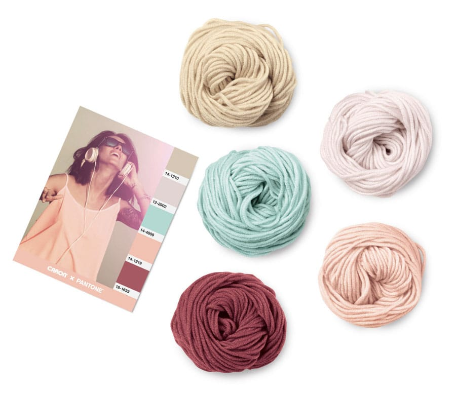 Caron x Pantone Yarn Links with Studio Knit