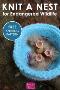 How to Knit a Birds Nest for Endangered Wildlife
